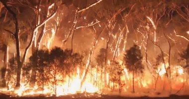 حرائق الغابات تحدث بسبب البشر بدلاً من الصواعق.. اعرف التفاصيل