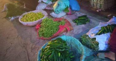 صور.. تعرف على أسعار الخضروات بأسواق القليوبية بعد انخفاضها