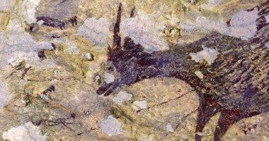 شاهد.. اكتشاف أقدم رسومات حيوانية فى العالم.. أين وكم عمرها؟