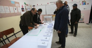 هيئة الانتخابات الجزائرية: الإقبال فى انتخابات الرئاسة سجل 20 %