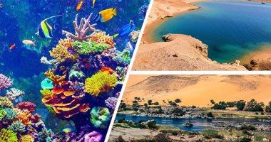 البيئة: رفع درجات الاستعداد بمحميات البحر الأحمر وجنوب سيناء خلال العيد