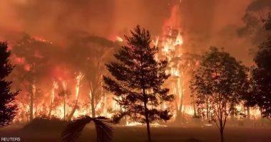مقتل رجل إطفاء وإصابة اثنين فى حرائق الغابات بأستراليا