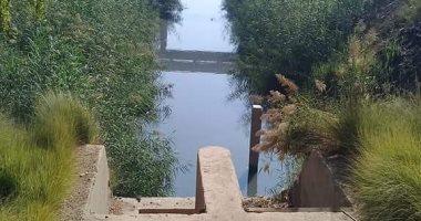 قارئ يشكو من صرف صحى يعرض صحة المواطنين للخطر بجزيرة الأكراد بأسيوط