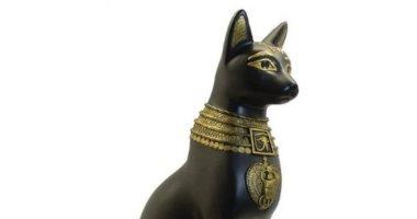 القارئ مينا صلاح يكتب : تحنيط القطط فى مصر القديمة