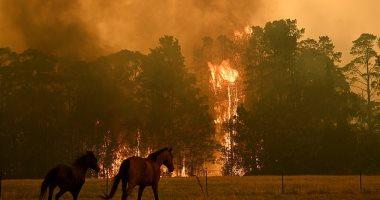 صور من الفضاء تكشف حجم كارثة حرائق الغابات بأستراليا