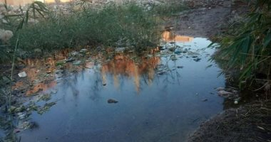 مياه راكده تهدد المنازل.. شكوى سكان شارع الفالوجى بالزقازيق