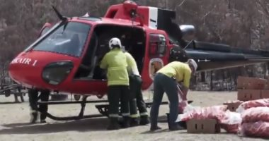 طائرات الانقاذ تلقى أطنان من الأطعمة على حيوانات الغابات فى استراليا.. فيديو