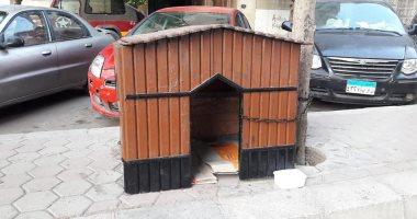 فيها حاجة حلوة.. ساكن بمصر الجديدة يبنى منزلا لحماية الحيوانات الضالة من المطر