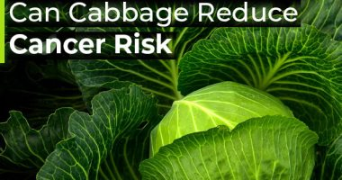 Cabbage is the favorite Egyptian food and the password to protect against cancer