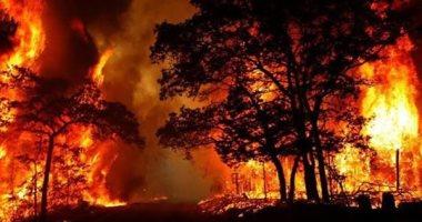 حرائق غابات أستراليا تعقد التحقيق فى تحطم طائرة إطفاء