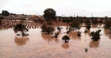 صور.. أمطار الخير تروى الزراعات بالوديان وتملأ خزانات سدود وآبار مطروح
