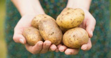 ارتفاع صادرات البطاطس لـ272 ألف طن وانفراج بالأسواق العالمية لاستقبال الشحنات