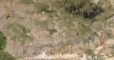 قرود تهاجم مزارع المواطنين شرقى منطقة جازان فى السعودية.. فيديو