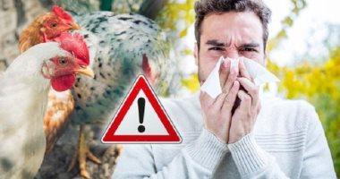 كورونا ليس الوحيد.. أمراض تنقلها الحيوانات إلى الإنسان.. تعرف عليها