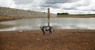 شبح التغير المناخى يفرض مزيد من التهديدات للعالم.. من نار أستراليا إلى الجفاف فى أفريقيا.. 8 ملايين مهددون بالجوع بزيمبابوى بسبب تراجع الزراعة.. ودعوات لتقديم حصة من الحصاد للحكومة لإنقاذ المناطق المنكوبة (صور)