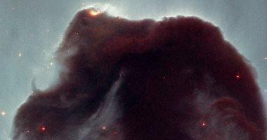 علماء يصنعون غبارا كونيا فى الميكروويف لدراسة أصل الحياة.. اعرف التفاصيل