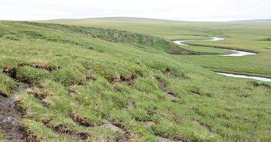 تغير المناخ يتسبب فى تحول المنطقة القطبية الشمالية من الثلج للخضرة