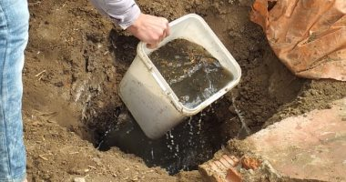 قارئة من ميت حبيش بمحافظة الغربية تناشد توصيل الصرف الصحى لشارعها