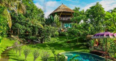 """""""بيت الشجرة"""" .. منزل خيالى على شاطئ بالى فى إندونسيا وسط الخضرة .. صور"""