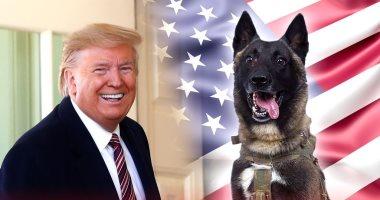 """دونالد ترامب يشكو من حصول الكلب """"كونان"""" على دعاية أكثر منه"""