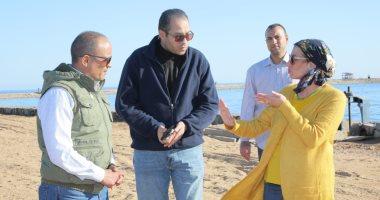 البيئة: تسجيل 177 نوعا من الشعاب المرجانية الصلبة فى مصر.. 70% منها بالبحر الأحمر