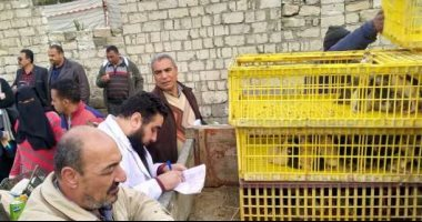 """محافظة البحيرة: 425 أسرة استفادت من """"قرض البط"""" والمشروع بدأ منذ عام.. فيديو"""