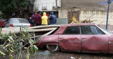 الرياح والأمطار الغزيرة تتسبب في سقوط الأشجار وتكسير السيارات في العجوزة