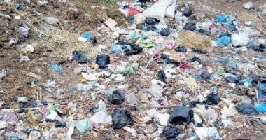 سيبها علينا .. شكوى من انتشار القمامة بقرية ميت موسى بالمنوفية
