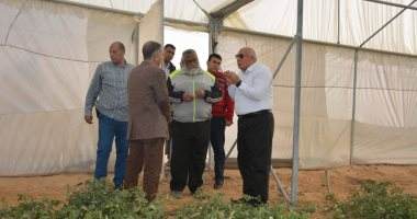 محافظ الوادى الجديد: فتح منفذ لمنتجات الصوب الزراعية بالخارجة لتوفيرها بأسعار مخفضة