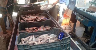 تعرف على أسعار الأسماك بسوق العبور اليوم الجمعة 26-2-2021