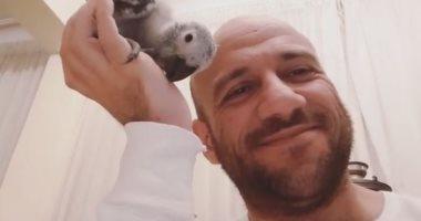 """أحمد مكى يعرف جمهوره على أحدث طيوره:  """"ابنى الجديد زينهم """""""