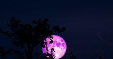 القمر الوردي