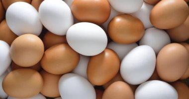 لماذا انخفضت أسعار البيض في الأسواق 9 جنيهات؟ .. شعبة الدواجن تجيب