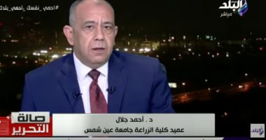 عميد زارعة عين شمس: أنتجنا 12 طن بطاطس والكيلو للمستهلك بـ2 جنيه.. فيديو