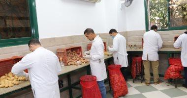 الزراعة: فحص 664 ألف طن بطاطس مائد معدة للتصدير.. وأوربا وروسيا بالمقدمة