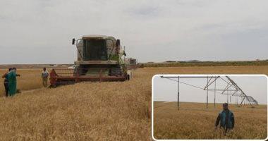 الزراعة تنفى تراجع الحكومة عن شراء القمح من المزارعين وفقاً للأسعار المحددة