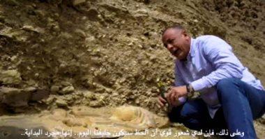 فيديو وصور.. الآثار تعلن عن كشف أثرى فى موقع جبانة الحيوانات والطيور المقدسة بسقارة