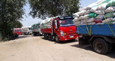"""""""تموين القليوبية"""": توريد 33 ألف طن من القمح للصوامع والشون حتى اليوم"""