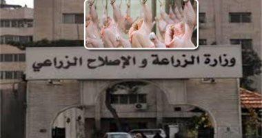 """""""البروتين  الأبيض"""".. وزارة الزراعة: مصر تنتج سنويا 1,4 مليار دجاجة و 13000 مليون بيضة.. و تلبى97% من احتياجات اللحوم البيضاء .. و 90 مليار جنيه استثمارات مصر فى صناعة الدواجن ولدينا اكتفاء ذاتى من البيض"""
