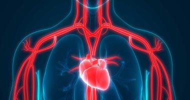 اطمن على نفسك.. متى يجب عمل فحوصات القلب قبل إجراء عملية جراحية؟