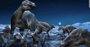 """اكتشاف ديناصور غير عادى """"بلا أسنان"""" فى أستراليا"""