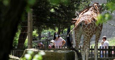 كنساس الأمريكية تعيد فتح حدائق الحيوان أمام الزوار بعد إلغاء إجراءات كورونا