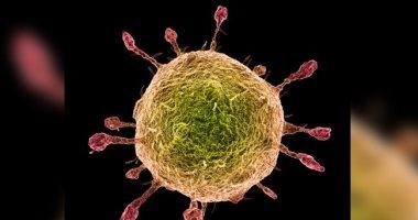 أشياء تجعل فيروس كورونا أشد خطورة وفتكاً من الأنفلونزا.. كورونا أكثر قدرة على العدوى.. يقتل بمعدل وفيات أسرع.. فترة حضانة الأنفلونزا 1- 4 أيام وكورونا ينقل العدوى بدون أعراض لمدة 14 يوماً