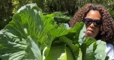 """تحمل """"كرنب"""".. أوبرا وينفرى: الإغلاق لم يمنع نمو النباتات الخضراء"""