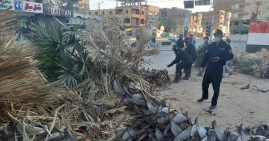 الحماية المدنية بالوادى الجديد تنظف أماكن سقوط أشجار بسبب الرياح .. صور
