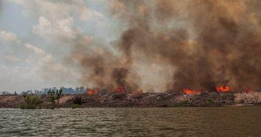 الصندوق العالمى للطبيعة: حرائق أستراليا أضرت بمليارات الحيوانات