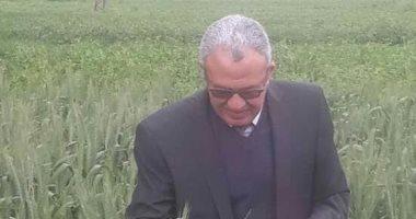 """""""زراعة بنى سويف"""": توربد 366 ألف طن من محصول بنجر السكر"""