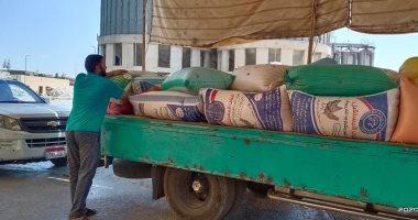 صور.. توريد 173 ألف و822 طن قمح بـ 22 منفذاً بمحافظة كفر الشيخ