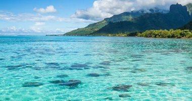 اليوم العالمى للمحيطات.. المحيط الهادئ أكبر مسطح مائى مفتوح فى العالم.. صور