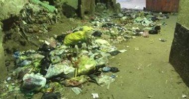 شكوى من انتشار القمامة فى محلة دمنة بالدقهلية